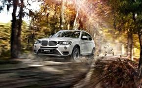 Картинка 2015, F25, BMW, бмв