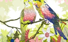 Обои цветы, попугаи, вектор, веточки, природа