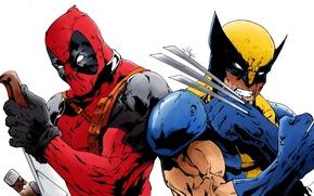 Картинка Росомаха, Wolverine, Deadpool, Marvel, Дэдпул, By Echudin