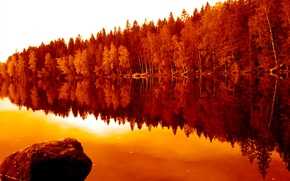 Картинка осень, лес, отражения, деревья, природа, река, forest, river, trees, nature, water, autumn, Финляндия, Finland, fall, …
