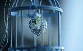 Картинка цветы, клетка, кулон, сердечко