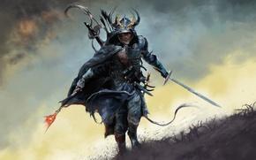 Обои трава, меч, доспехи, бег, Воин