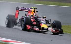Картинка Formula 1, Red Bull, Передок, Kvyat, Квят, Сыро