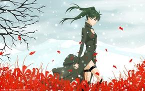 Картинка поле, цветы, слезы, lenalee lee, d.gray-man