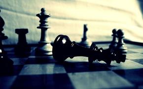 Картинка макро, шахматы, доска, фигуры