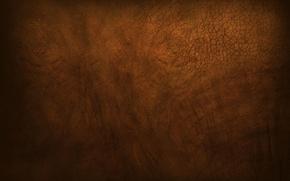 Картинка brown, muddy, gutsy, Elephant skin, rough, dusty
