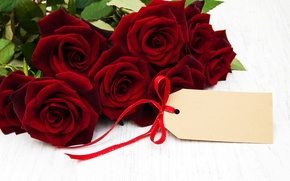 Обои розы, букет, red, flowers, roses