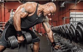 Картинка machine, gym, the rock, workout, Dwayne Johnson