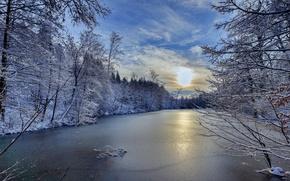 Картинка Baden-Württemberg, Germany, Баден-Вюртемберг, зима, Германия, деревья, река Швиппе, River Schwippe, река