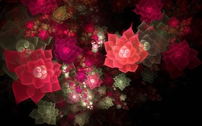 Картинка свет, цветы, коллаж, обои, полутень