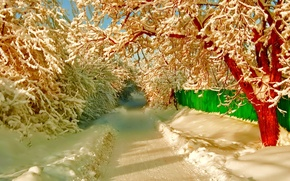 Картинка зима, дорога, снег, деревья, улица, забор