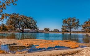 Картинка осень, небо, деревья, озеро, голубое, Калифорния, США, солнечно, Arroyo Grande Valley