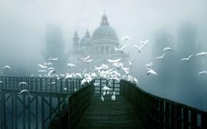 Картинка птицы, мост, город, туман