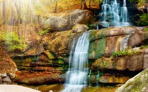 Обои солнце, деревья, природа, парк, водопад, каскад, waterfall, Scenery
