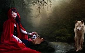 Картинка лес, природа, волк, Красная шапочка