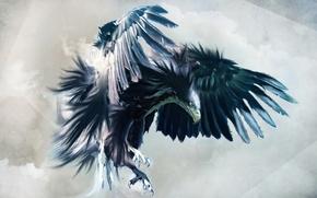 Картинка bird, jet, kil