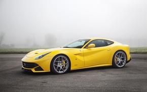 Картинка Туман, Желтый, Асфальт, Ferrari, Автомобиль, berlinetta, F12