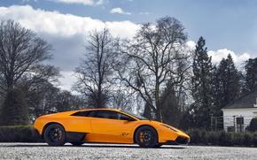 Картинка Lamborghini, Murciélago, LP-670