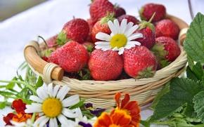 Картинка ягоды, корзина, ромашка, клубника, бархатцы