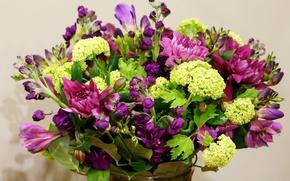 Картинка хризантемы, гортензия, альстрёмерия, Bouquets