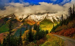 Обои nature, mountains, sky, clouds, snow, forest, park, trees, leaves