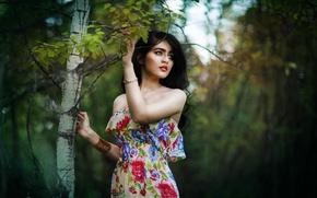 Картинка лето, взгляд, листья, девушка, украшения, ветки, природа, дерево, макияж, платье, брюнетка, декольте, браслеты