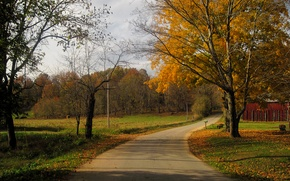 Картинка дорога, осень, деревья, листва, США, road, trees, Кентукки, autumn, leaves, fall, Kentucky