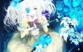 Картинка девушка, цветы, скрипка, лилии, лица, бант, touhou, komeiji koishi