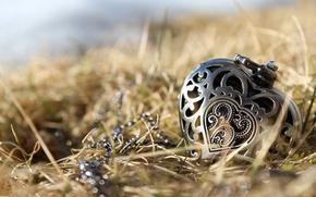 Картинка трава, сердце, кулон, украшение, гравировка