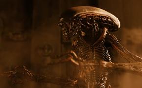 Картинка игрушка, Чужой, статуэтка, Alien, тварь, Xenomorph, Ксеноморф