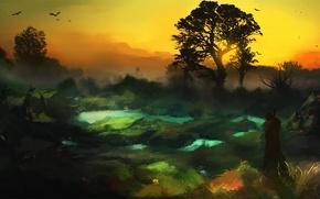 Картинка закат, птицы, туман, дерево, человек, болото, фигура, путник