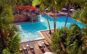 Картинка World, USA, Holiday, Florida, Swimming pool, Resort, Weston