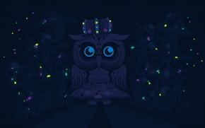 Картинка сова, рисунок, грибы, вектор, корона