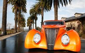 Обои Пальмы, Оранжевый, Тюнинг, Ford