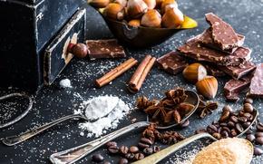 Картинка кофе, шоколад, сахар, орехи, корица, сахарная пудра, пряности, анис звёздчатый, Natalia Klenova