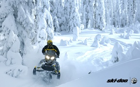 Картинка лес, снег, спорт, sport, snow, снегоход, snowmobile, ski-doo, brp, skidoo, adrenaline, renegade