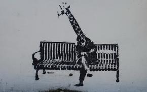 Картинка скамейка, стена, граффити, человек, жираф
