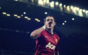 Картинка Manchester United, Javier Hernandez, Chicharito
