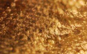 Картинка поверхность, свет, металл, пупырышки, золото, блеск, бугорки
