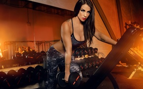 Обои look, fitness, model fitness, dumbbell, workout, pose