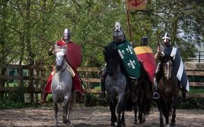 Картинка доспехи, воины, лошади, кони, рыцари