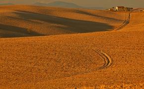 Картинка поле, осень, холмы, Италия, Тоскана, Орчано-Пизано