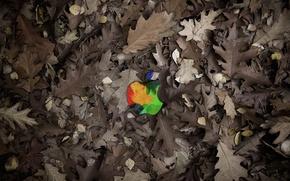 Картинка листья, Apple, Mac
