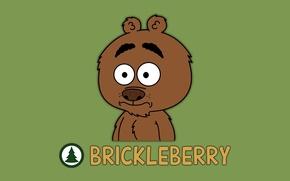 Обои медведь, bear, Malloy, Бриклберри, Brickleberry, Мультфильм