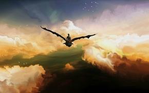 Картинка небо, птицы, Иккинг, Беззубик, Toothless, ночная фурия, Hiccup, How to Train Your Dragon 2, Как ...
