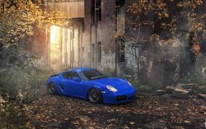 Картинка car, blue, tuning, stance, Porsche Cayman, Evano Gucciardo, evog