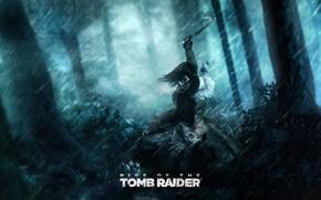 Картинка лес, деревья, дождь, медведь, Tomb Raider, lara croft, кусты, ледоруб, Rise of the Tomb Raider