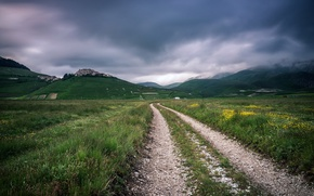 Картинка дорога, поле, лето