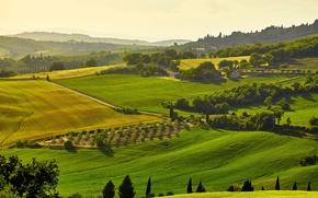 Обои солнце, деревья, поля, Италия, домики, луга, Тоскана