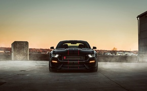 Картинка Mustang, Ford, Shelby, Black, Night, 2016, GT350r